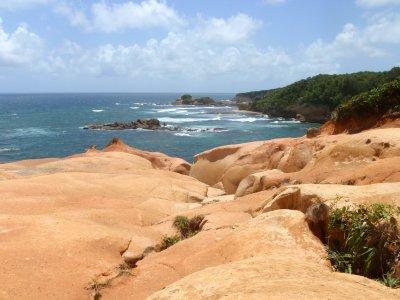 dominique falaises argile