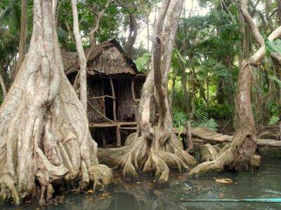 croisière à la Dominique rivière indienne