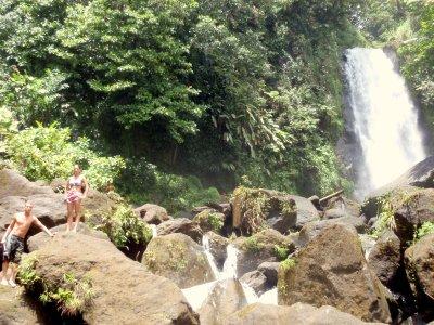 dominique trafalgar falls