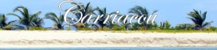 Croisière personnalisée à Carriacou aux Grenadines